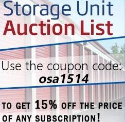 Online Storage Auctions